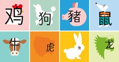 The surprising influence of the Chinese zodiac - Chinese Ideen Japanese Language Learning, Chinese Language, Learn Chinese Characters, Teaching French, Teaching Spanish, Learn Mandarin, Japanese Words, French Lessons, Spanish Lessons