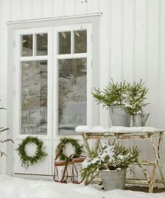 Winter doesn't have to be drab ... just add a little greenery against the snow.
