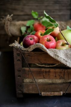 Feasting at Home - Fall Apples