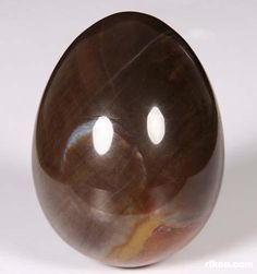 Petrified Wood Crystal Egg