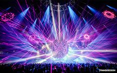 Seven EDM Artists To Know