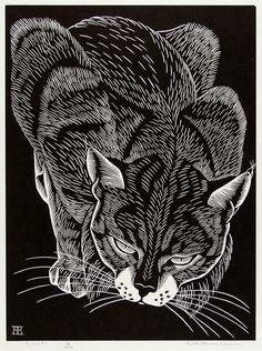 Belle Baranceanu (American, 1902-1988), Bobcat, c.1937.