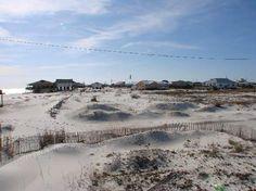 Dauphin Island Tourism: 8 Things to Do in Dauphin Island, AL   TripAdvisor
