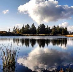 Montana, River, Nature, Outdoor, Villach, Slovenia, Road Trip Destinations, Hiking, Outdoors