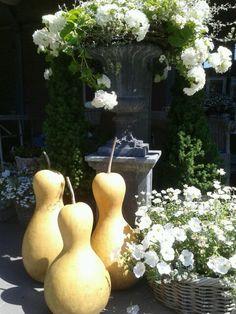 Mooi met natuurlijke decoratie. 3 gedroogde kalebassen.