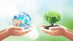 Earth Day presents an opportunity for your small business to do something good for the environment. Here is a list of green activities for Earth Day your company can do to make a difference. When Is Earth Day, First Earth Day, World Earth Day, Earth Overshoot Day, Earth Day Images, Earth Day Posters, Old Farmers Almanac, Earth Day Activities, Arbour Day