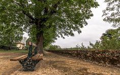 Park of Thirds - Marcel de Groot Canon 450D - Canon 10-22 @ 10mm - F/11 - iso100 - 1/13sec.