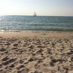 Naples Beach, Fl