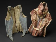 Silk corset, Europe, 1871-1900. Credits: Science Museum, London. Corsets were designed to be tightly pulled to give women an hourglass shape or show off a military man's rigid and straight back. Unfortunately, excessive use could be very damaging to the internal structures of the body. To the right of the corset is a plaster cast of a female torso (A61203), dissected to show the internal organs which have become displaced after many years of corset wearing. Corset: A12302