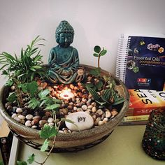 Meditation garden I made today : IndoorGarden