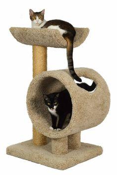 Wood cat furniture of high quality for large cats - Hunde und Katzen Big House Cats, Cool Cat Trees, Cat Activity, Wood Cat, Cat Scratching Post, Cat Condo, Outdoor Cats, Cat Behavior, Cat Furniture