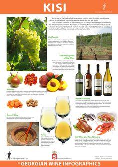 Kisi - Georgian Wine Infographics
