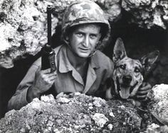 Pal was responsible for saving an entire Marine platoon from an ambush on Okinawa after discovering a hidden Japanese machine gun nest. Military dogs were commonly used by the Marines in the Pacific for this specific task along with sniffing out mines dug in hidden Japaneses soldiers and more importantly snipers.