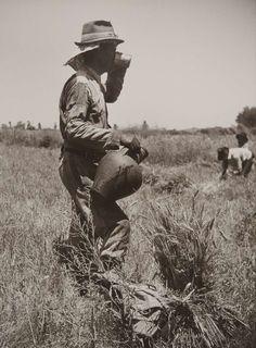 """Série exposição """"Motivos do Sul"""". 1943/45."""