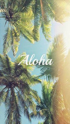 Aloha-Palm-Trees-iPhone-6-wallpaper