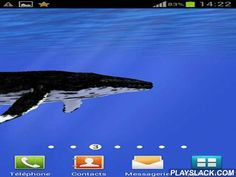 Ocean: Whale  Android App - playslack.com , Ocean: Whale - live wallpapers show incredible elegance of the ocean. animal whale will swim on the screen of your smartphone or tablet PC. The app will surely give you affirmative impression.