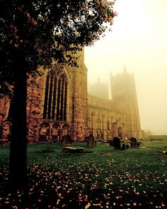Autumn mist at Durham Cathedral, United Kingdom. Enduring loveliness.