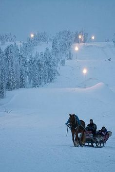 sleigh bells ring are ya listen Walkin in the winter wonder land! Would love to go for a winter sleigh ride! Winter Szenen, I Love Winter, Winter Magic, Winter Christmas, Outdoor Christmas, Christmas Scenes, Christmas Photos, Merry Christmas, Antique Christmas