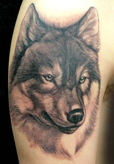 Wolf Tattoo by Lorenzo, Evil Machines, Roma, Italia