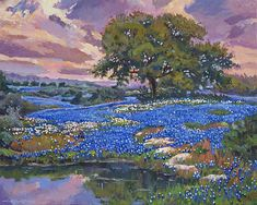 Boerne Texas, Impressionist Paintings, Blue Bonnets, Are You Happy, Instagram Images, David, Fine Art, Group