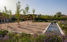 Fernando Martos landscapedesign Dry Garden, Garden Plants, Water Features, Garden Inspiration, Garden Landscaping, Outdoor Gardens, Outdoor Living, Garden Design, Sidewalk