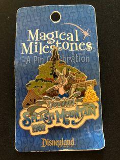 Disneyland Pins, Disneyland Resort, Disney Pins, Splash Mountain, Patches, Ebay