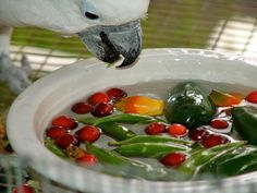 """Hot weather making fresh foods you offer to your birds wilt, become limp or rubbery? Try floating them in water! They stay fresher longer, making them more appetizing, plus birds like the added challenge of """"bobbing"""" for their foods Try it! Your birds will love you for it. I know mine do."""