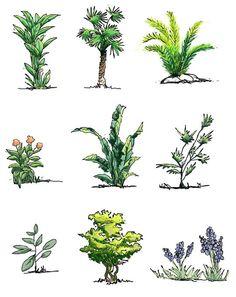 landscape sketch Hand drawn shrubs in elevation Architecture Drawing Sketchbooks, Landscape Architecture Drawing, Landscape Sketch, Landscape Plans, Landscape Drawings, Landscape Design, Collage Landscape, Architecture Collage, Architecture Portfolio