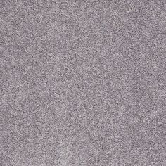 Shaw�Batter Up I Ink Spot Textured Indoor Carpet