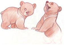 Design Bears & Raccoons 6