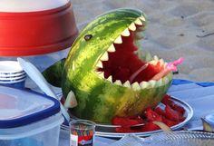 Shark Bait! Photo by Melissa Ferguson -- National Geographic Your Shot
