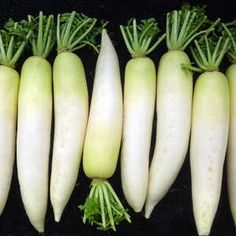 You may have only experienced the daikon radish in crisp, raw salads, but trust us—this root veggie has far more to offer. Never experienced a daikon radish at all? It's time to change that. Diakon Radish Recipe, Daikon Recipe, Grilled Vegetables, Fruits And Vegetables, White Radish Recipes, Easy Stuffed Cabbage, Pork Cutlets, Fall Fruits, Vegetables