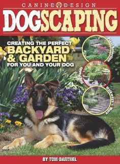 DIY Pets : Planting a Dog Friendly Garden Dogscaping: Creating the Perfect Backyard and Garden for You and Your Dog Sharing is caring, don't forget to share ! Dog Friendly Backyard, Dog Backyard, Backyard Landscaping, Backyard Ideas, Landscaping Ideas, Dog Friendly Plants, Garden Ideas, Backyard Projects, Garden Crafts