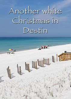 1000 Images About Fl Beach Christmas On Pinterest
