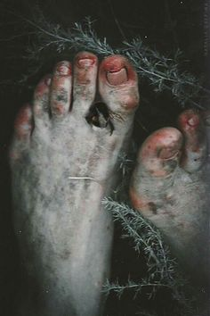 """""""What happened to your feet?"""", he cried out. """"I ran through Nettle Mile."""", she said, grinning. """"But why?"""" """"It was a dare."""""""