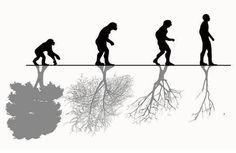 Evolucionem?