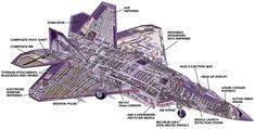 F-22A Cutaway Illustration