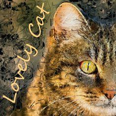 PCペイントで絵を描きました! Art picture by Seizi.N:    猫ちゃんの絵を描きました、昔に飼っていたクゥたんに似たネコちゃんで愛着がわきます。  Boyz...