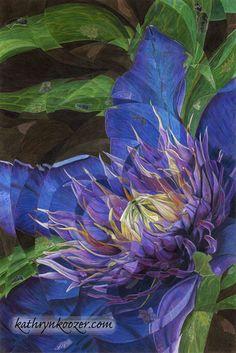 MultiBlue - Flora & Fauna - Colored Pencil Art | Kathryn Koozer - Seattle Artist