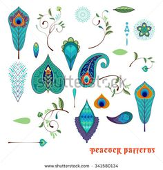 Set for design with peacock feathers, branches, leaves, flowers and decorative elements.  - stock vector