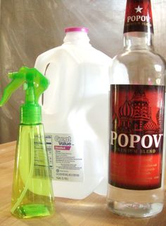 Learn how to make your own copy cat best press spray starch. Recipe and instructions included.