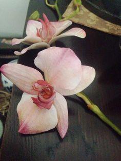 orchidea creata per il corso del 34 ottobre a Imperia