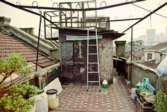 rooftop pigeon coop - - Yahoo Image Search Results