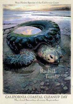 It is a poster of 'California Coastal Clean up Day' to engage people recognise a problem as environmental pollution in California. This poster presents ocean in the background which relates with 'Coastal'. A radial turtle is a single focal image to create visual impact. And radial turtle symbolises nature and marine ecosystem in California Coast. A tire is place on turtle instead of its shell that metaphor a mean of destroyed nature by humen.