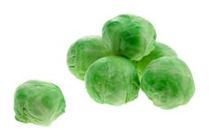 How to grow brussels sprouts: They can be a bit of a challenge to grow, but they will produce a great harvest for your efforts.