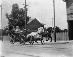 Horse-drawn fire engine, Los Angeles - 1910.