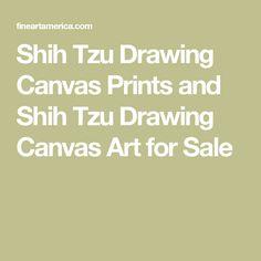 Shih Tzu Drawing Canvas Prints and Shih Tzu Drawing Canvas Art for Sale Football Canvas, Canvas Art For Sale, Ohio State Football, Shih Tzu, Fine Art America, Print Design, Canvas Prints, Drawings, Pictures