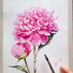 One more peony in process  for new pink series  еще один розовый друг для новой розовой серии :)