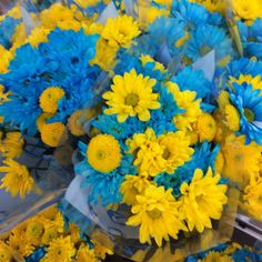Beautiful Daisies from our 10th & Reed Store. #ACMEMarkets #Daisies