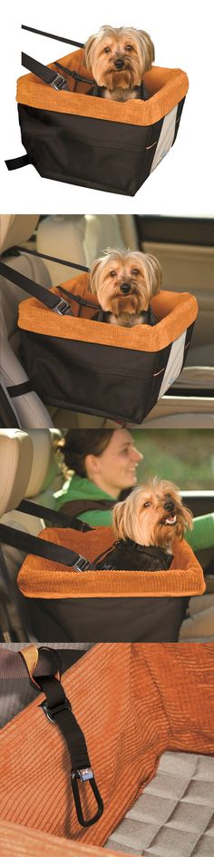 Car Seats and Barriers 46454: Dog Booster Seat Pet Car Chair Auto Carrier Travel Safety Basket With Seat Belt -> BUY IT NOW ONLY: $66.95 on eBay!